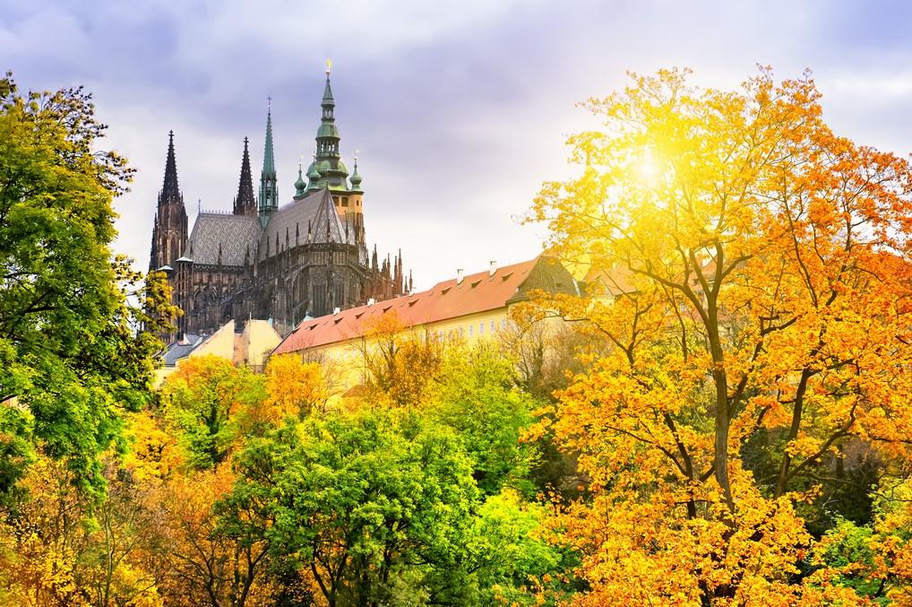 Catedral Castillo Praga