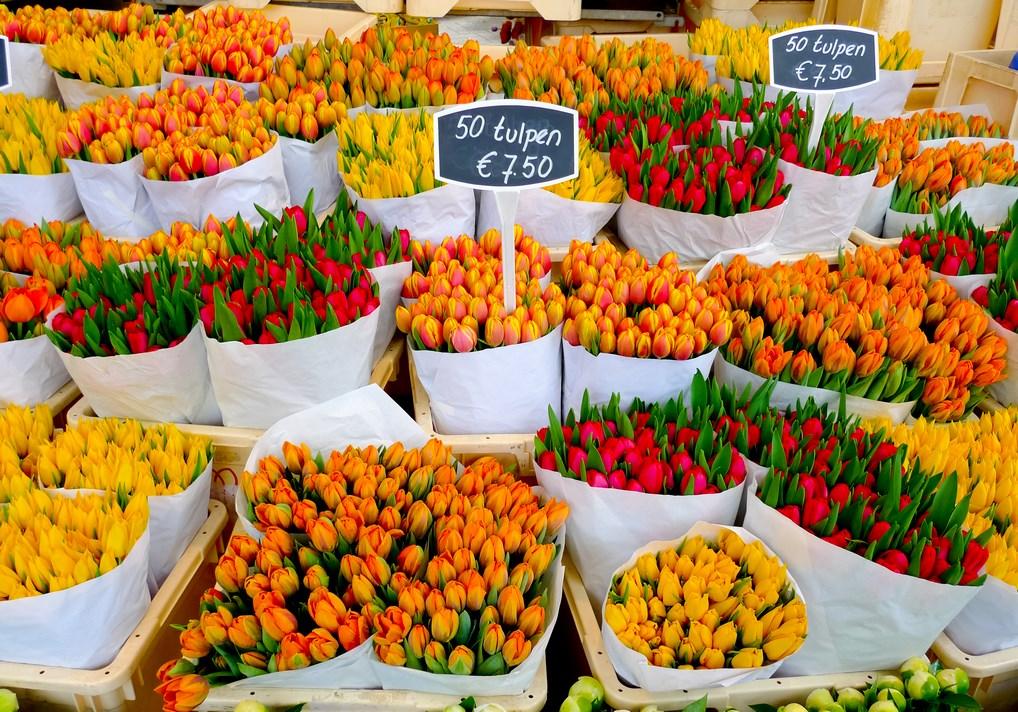 Hay muchos mercados para disfrutar en Ámsterdam, donde encontrarás desde ropa a tulipanes